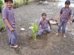 Tree Plantation at Gauridad Primary School with LIFE