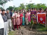 Tree Plantation at St. Thomas School